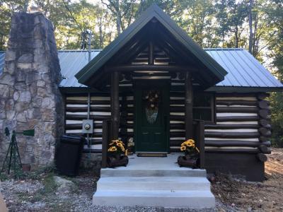 Fallingwater, Ohiopyle, Laurel Highlands - Markleysburg, PA - Great Lakes PA Vacation Rental